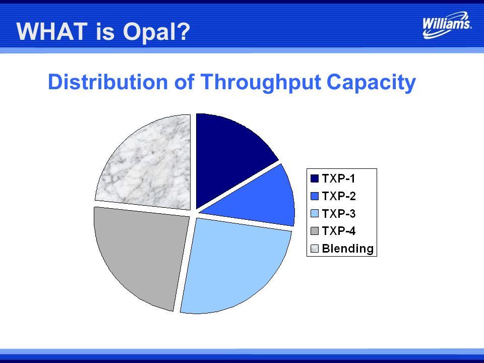 Distribution of Throughput Capacity