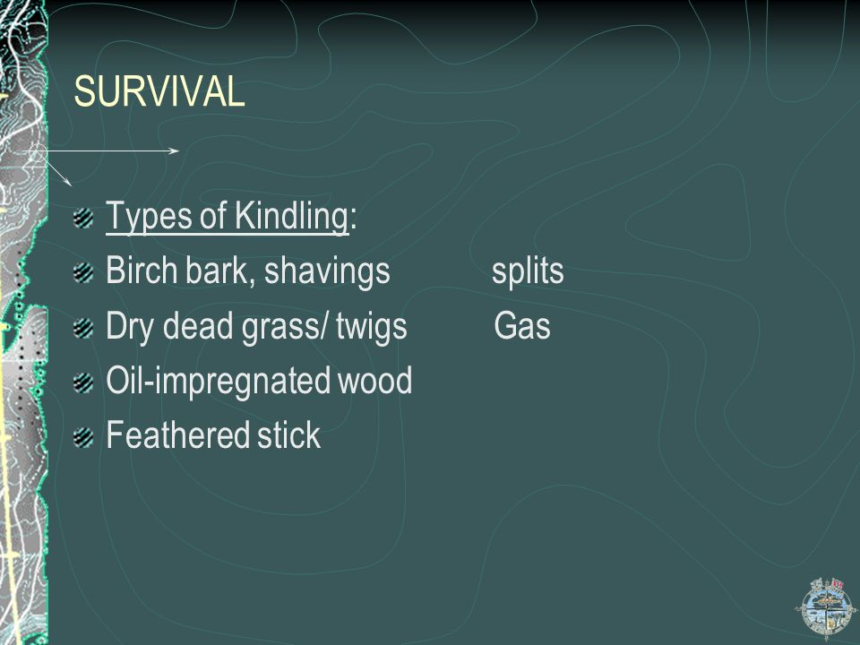 SURVIVAL Types of Kindling: Birch bark, shavings splits