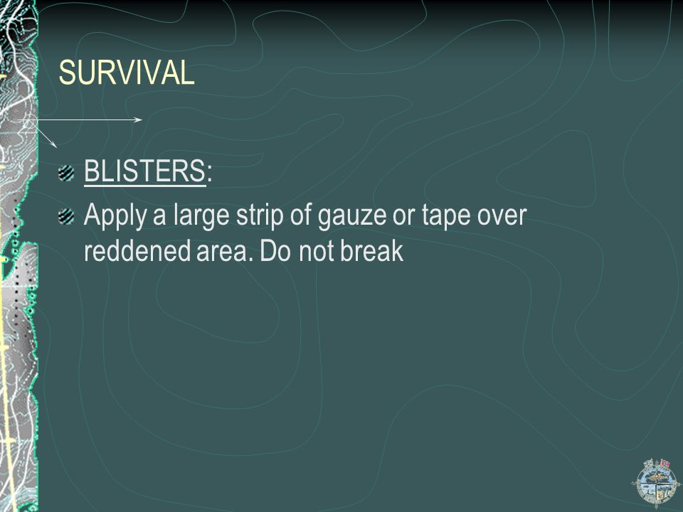 SURVIVAL BLISTERS: Apply a large strip of gauze or tape over reddened area. Do not break