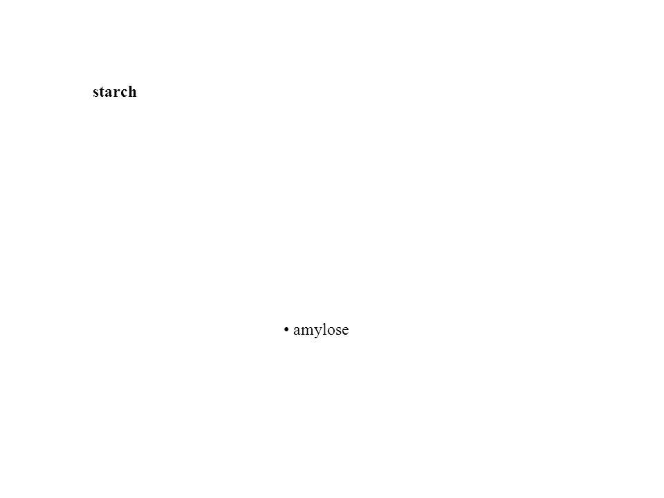 starch • amylose • amylopectin • dextrins