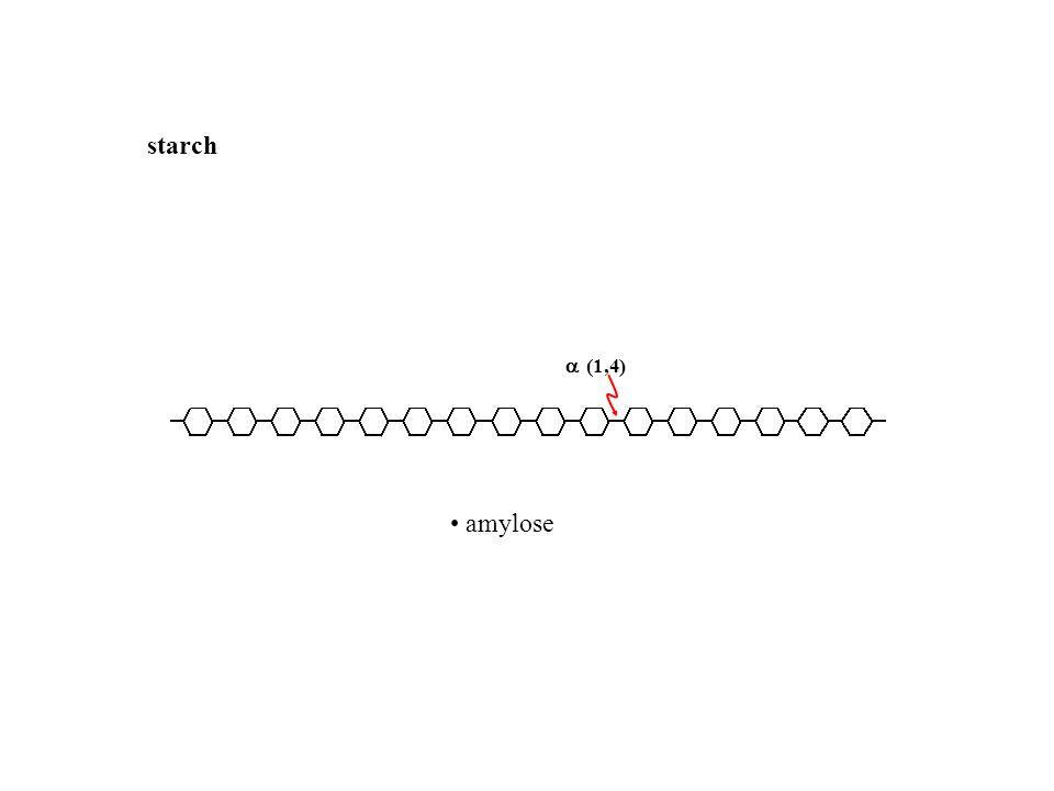 starch (1,4) • amylose • amylopectin • dextrins