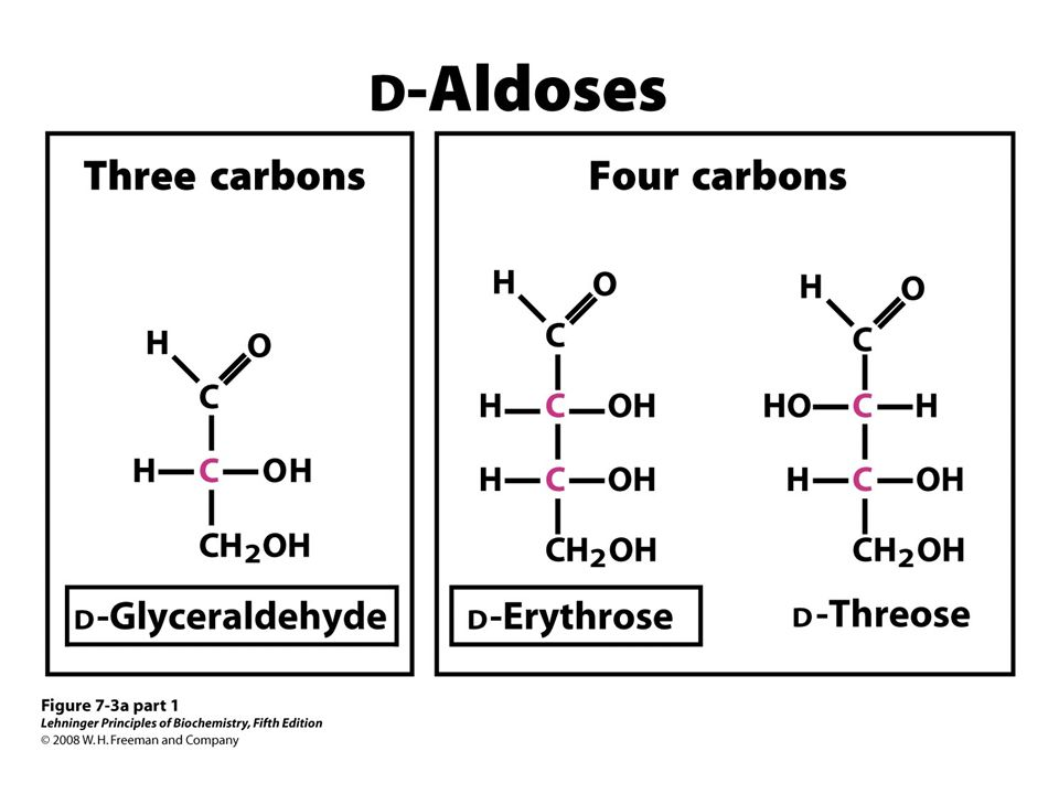 FIGURE 7-3a (part 1) Aldoses and ketoses