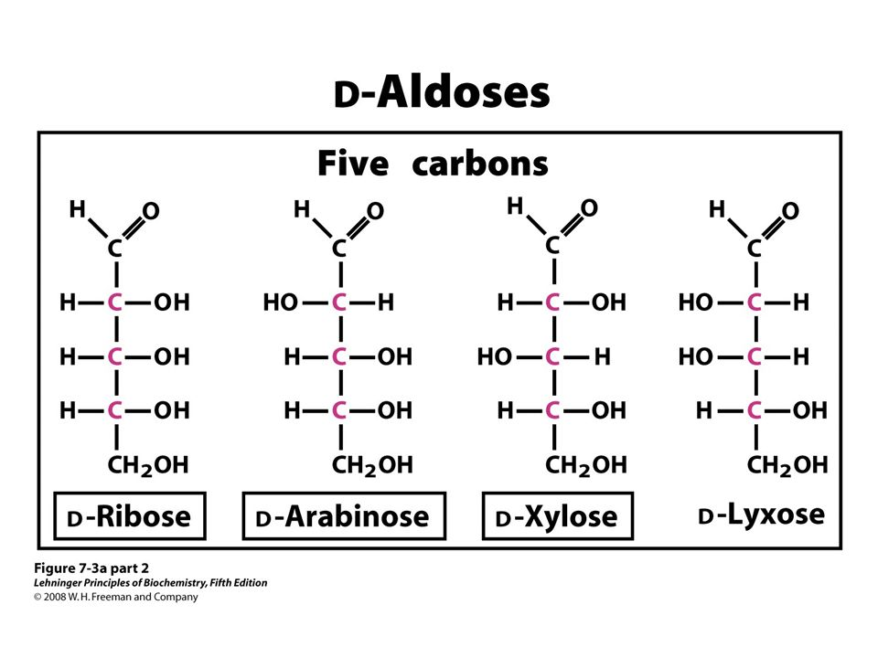 FIGURE 7-3a (part 2) Aldoses and ketoses