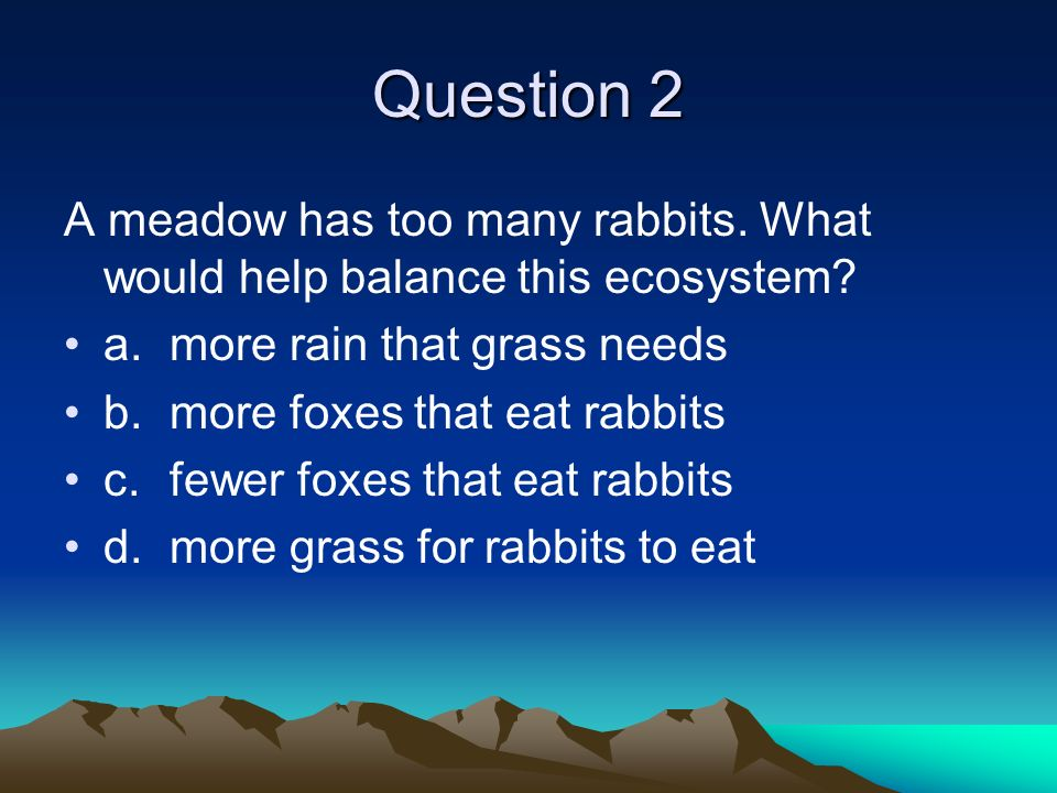 Question 2 A meadow has too many rabbits. What would help balance this ecosystem a. more rain that grass needs.