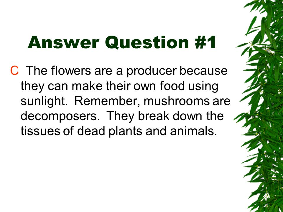 Answer Question #1