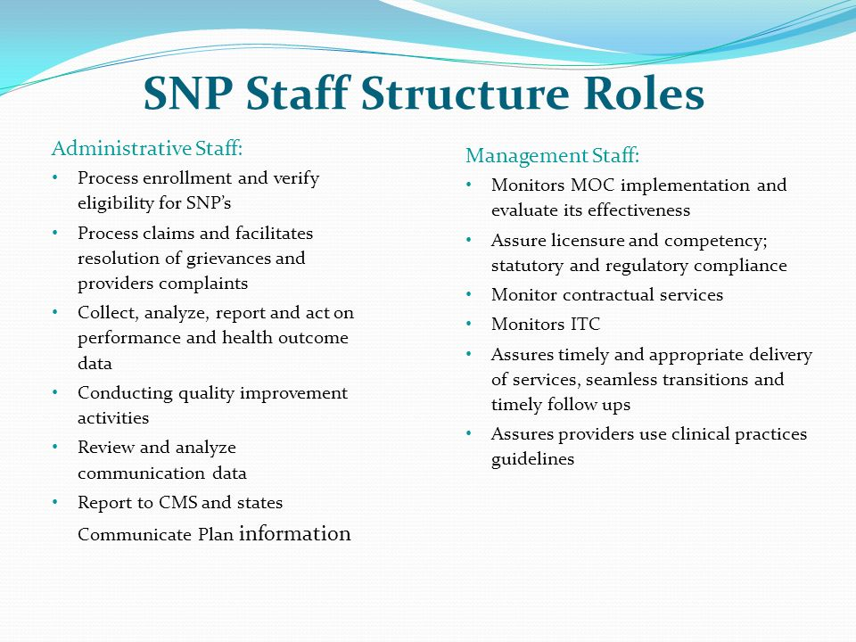 SNP Staff Structure Roles