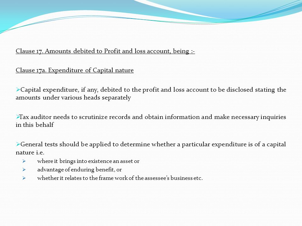 Clause 17. Amounts debited to Profit and loss account, being :-