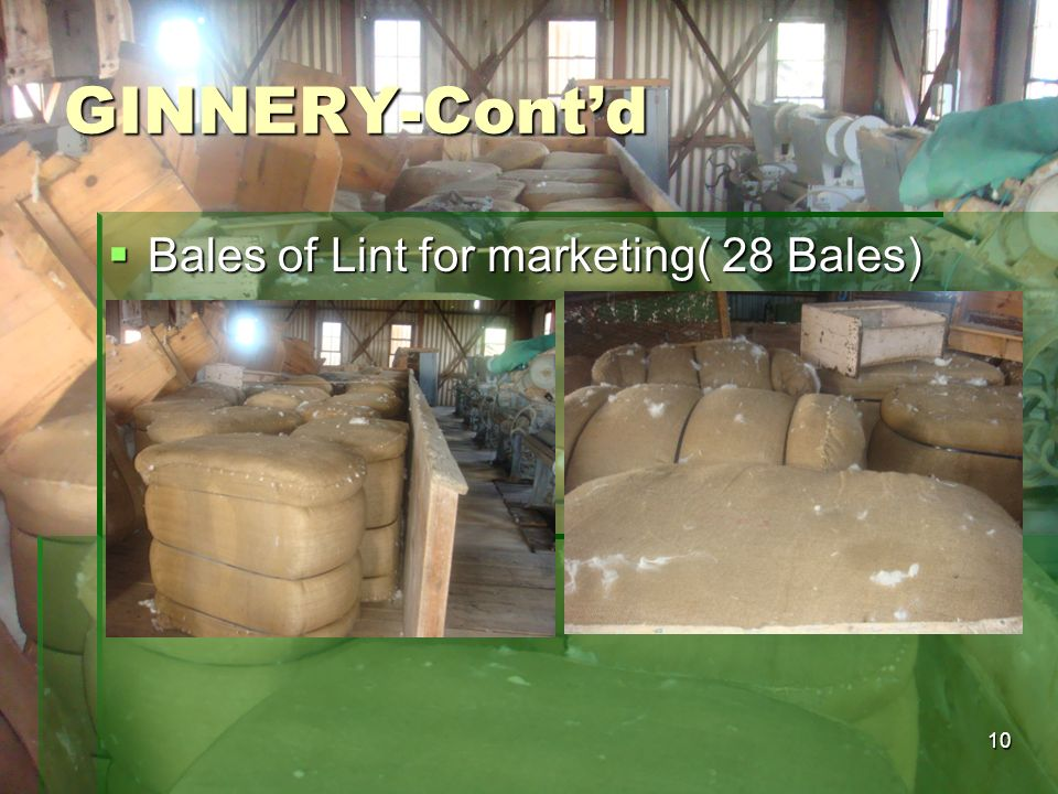 GINNERY-Cont'd Bales of Lint for marketing( 28 Bales)