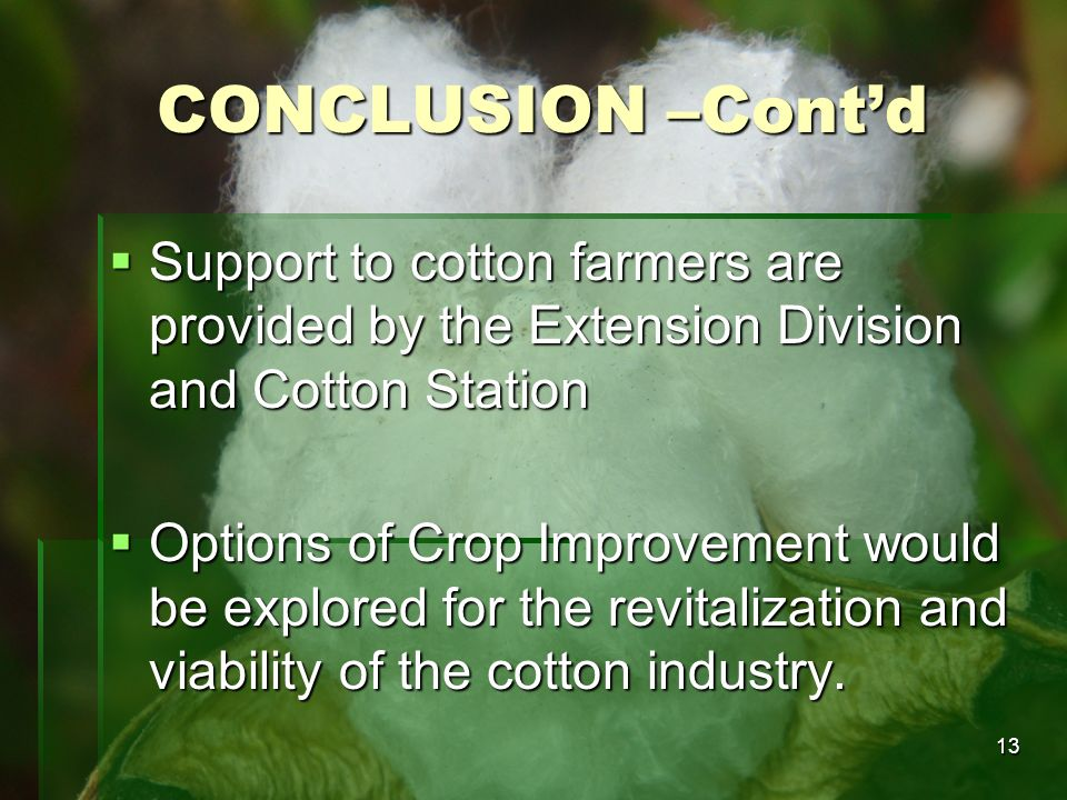 CONCLUSION –Cont'd Support to cotton farmers are provided by the Extension Division and Cotton Station.
