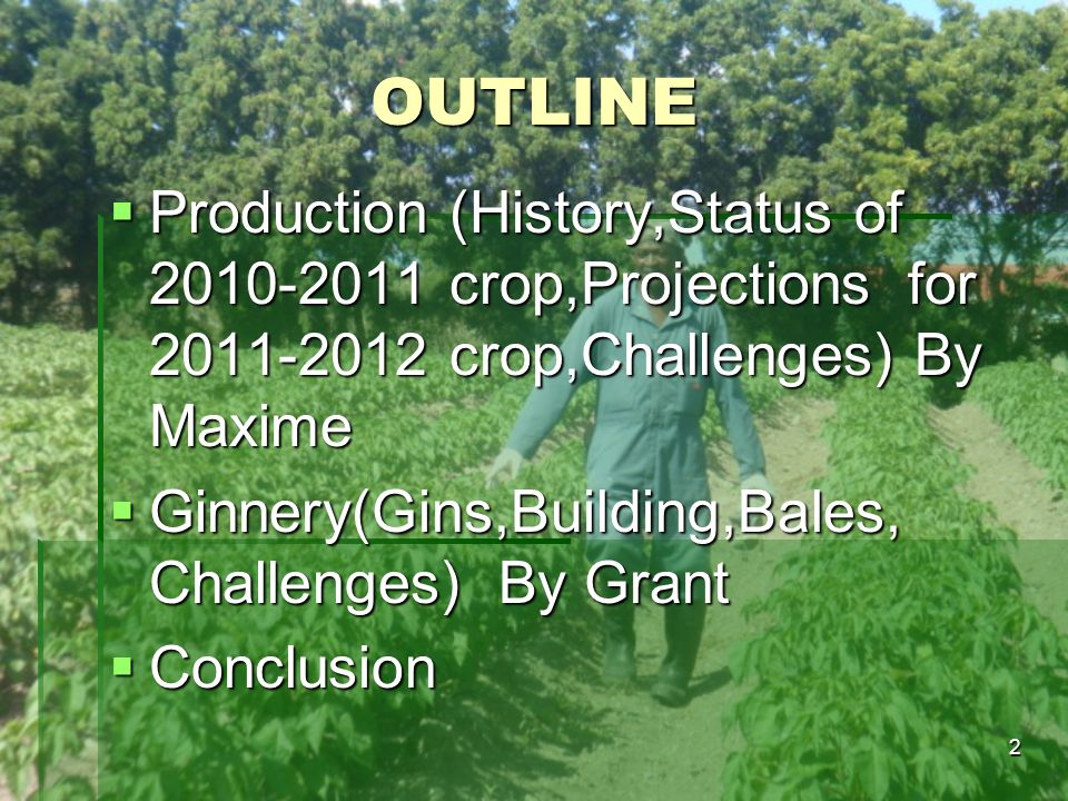 OUTLINE Production (History,Status of crop,Projections for crop,Challenges) By Maxime.