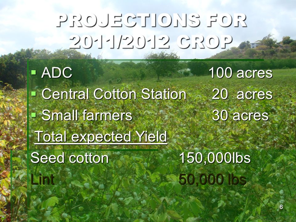 PROJECTIONS FOR 2011/2012 CROP ADC 100 acres