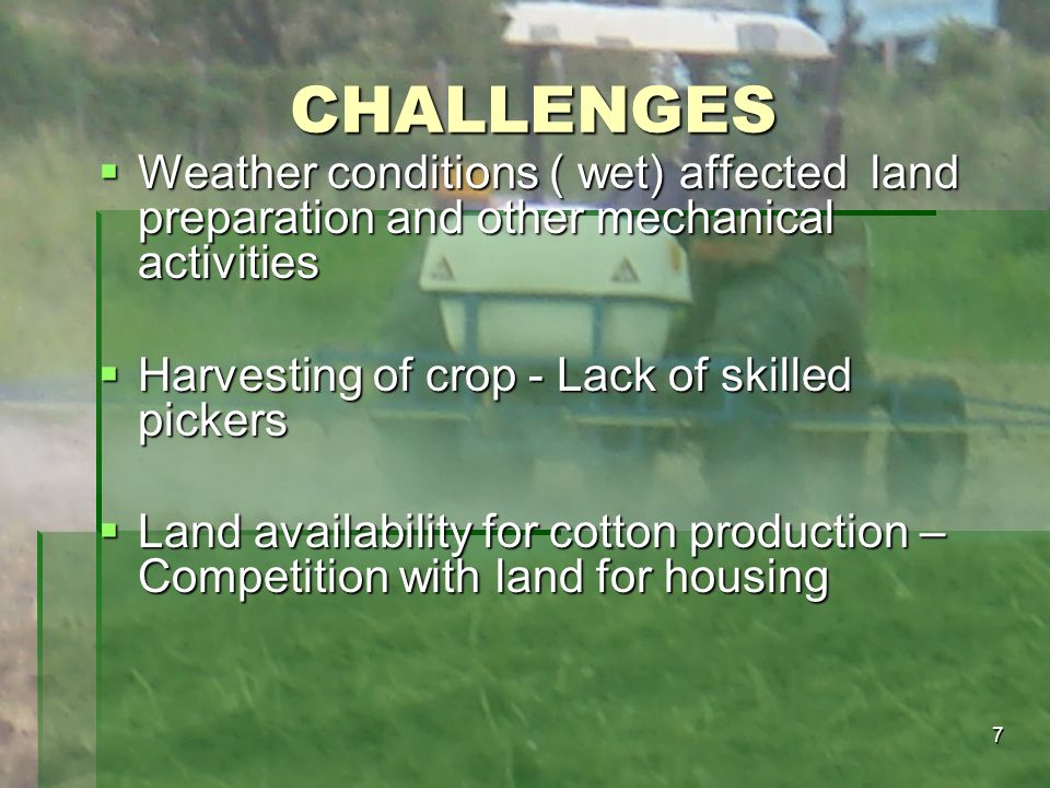 CHALLENGES Weather conditions ( wet) affected land preparation and other mechanical activities. Harvesting of crop - Lack of skilled pickers.