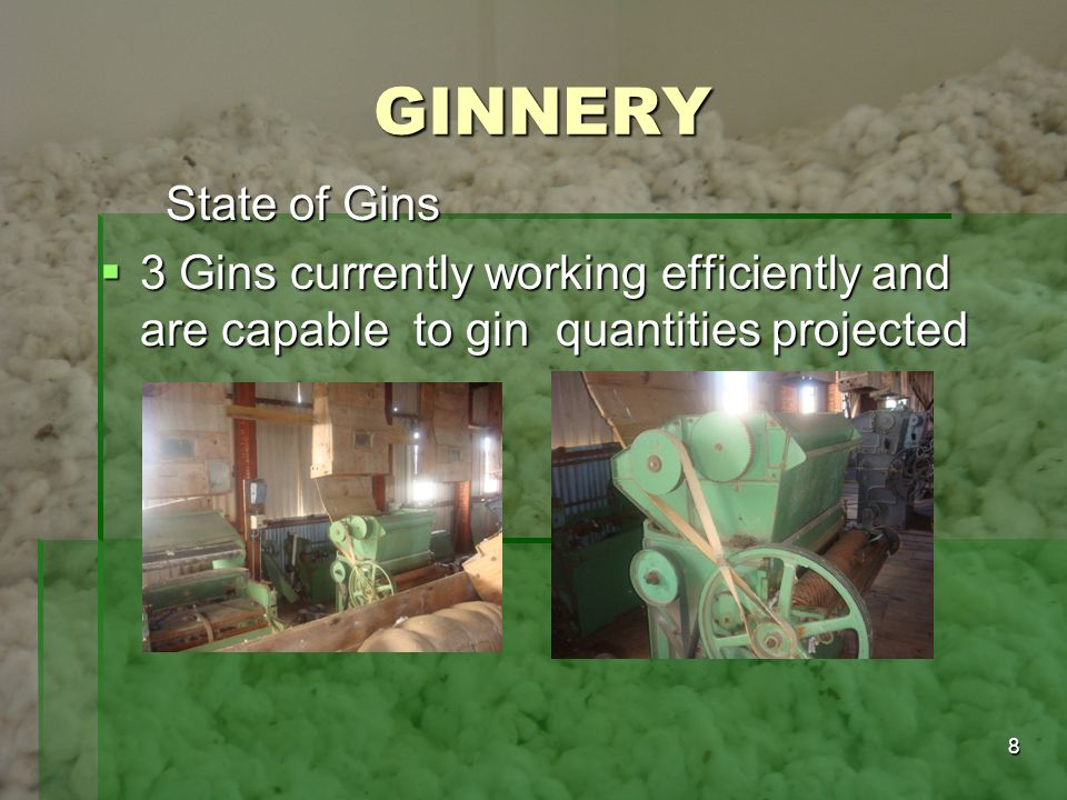 GINNERY State of Gins.