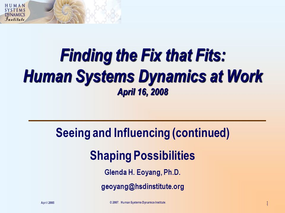 Finding the Fix that Fits: Human Systems Dynamics at Work April 16, 2008