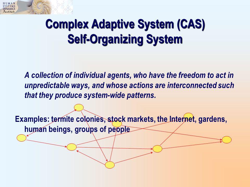 Complex Adaptive System (CAS) Self-Organizing System