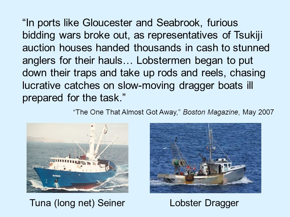 In ports like Gloucester and Seabrook, furious bidding wars broke out, as representatives of Tsukiji auction houses handed thousands in cash to stunned anglers for their hauls… Lobstermen began to put down their traps and take up rods and reels, chasing lucrative catches on slow-moving dragger boats ill prepared for the task.