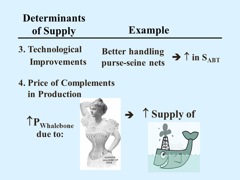 Determinants of Supply Better handling purse-seine nets
