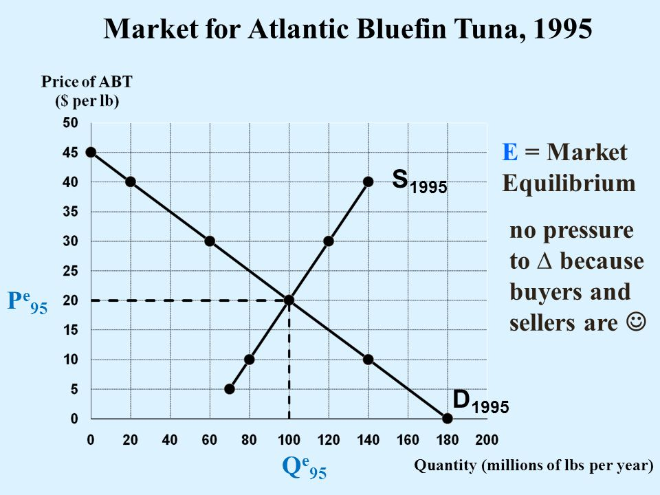 Market for Atlantic Bluefin Tuna, 1995