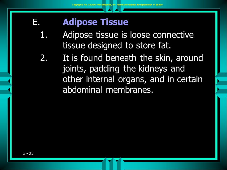 1. Adipose tissue is loose connective tissue designed to store fat.