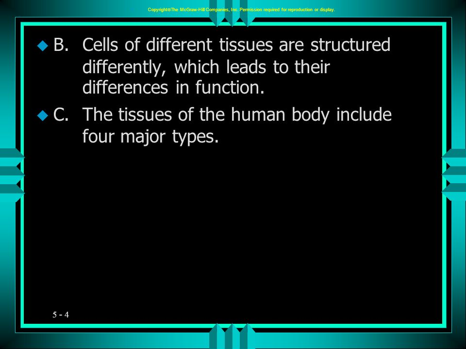 C. The tissues of the human body include four major types.