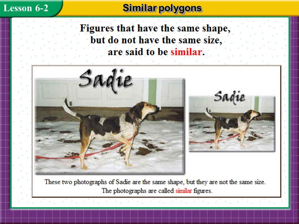 Lesson 6-2 Similar polygons