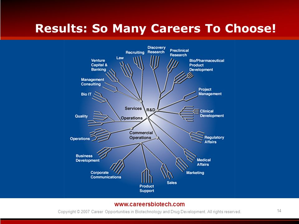 Results: So Many Careers To Choose!