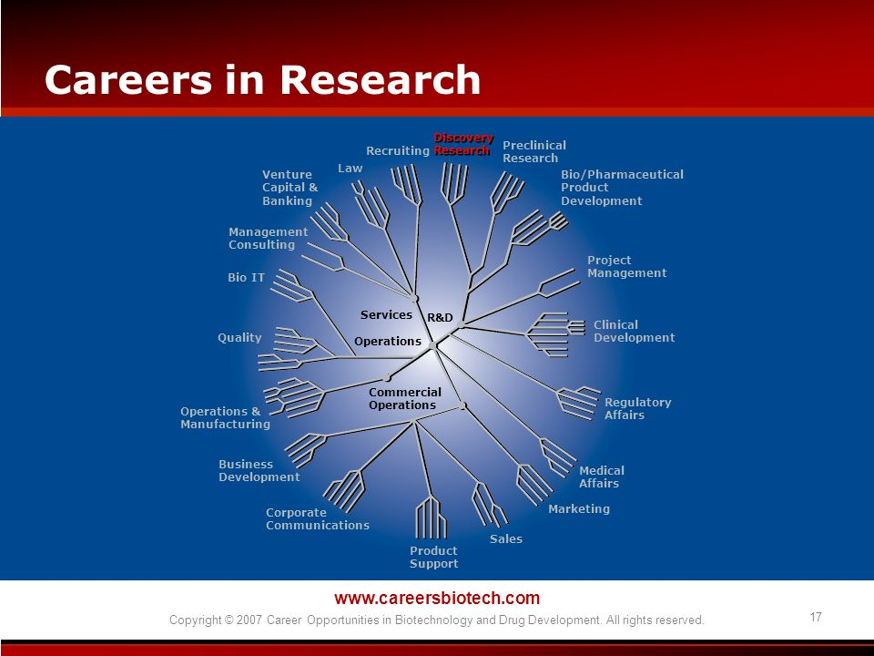 Careers in Research   17