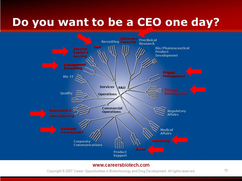 Do you want to be a CEO one day