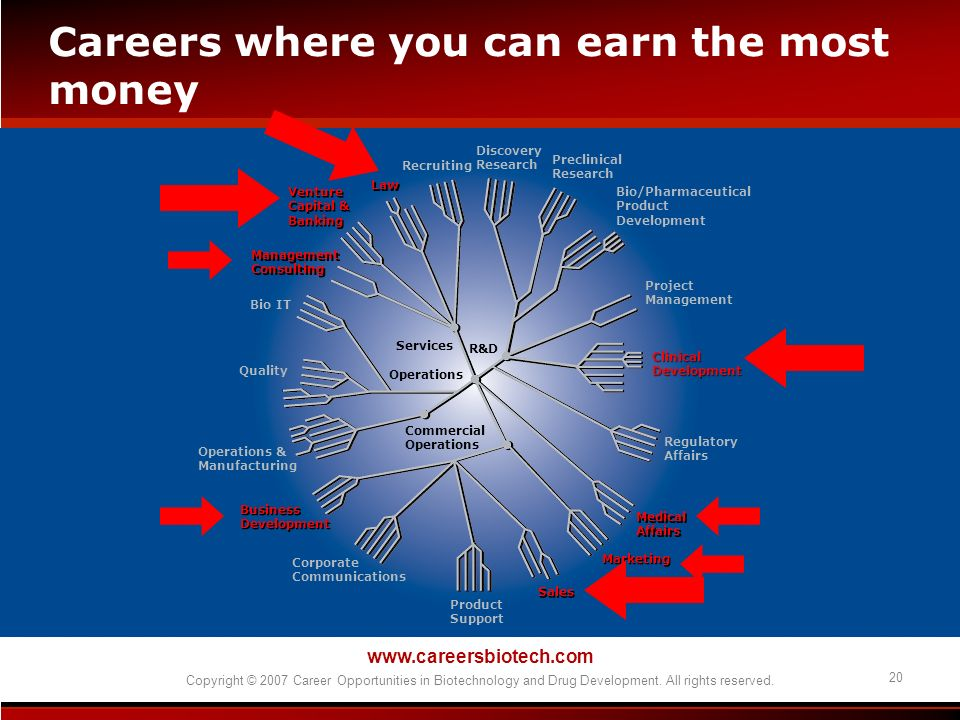 Careers where you can earn the most money