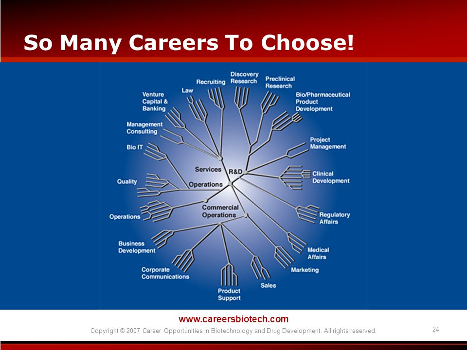 So Many Careers To Choose!