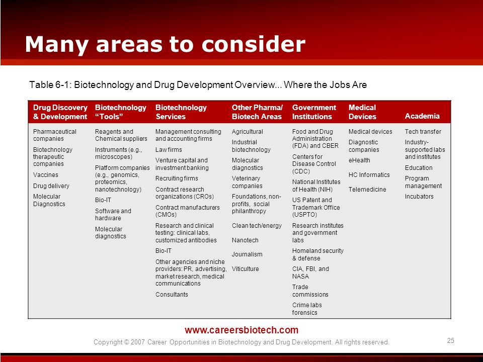 Many areas to consider Table 6-1: Biotechnology and Drug Development Overview... Where the Jobs Are.