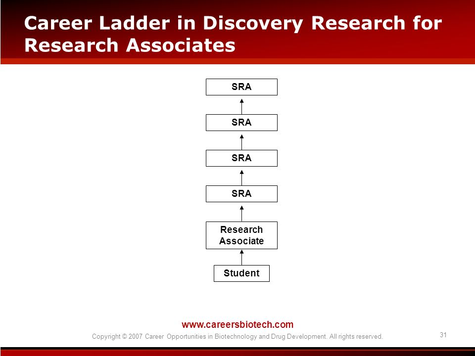 Career Ladder in Discovery Research for Research Associates