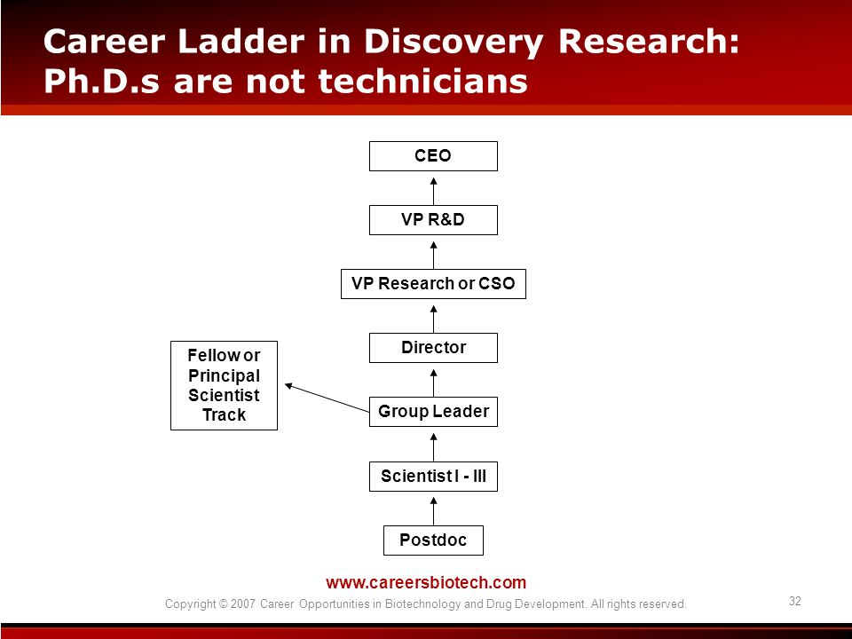 Career Ladder in Discovery Research: Ph.D.s are not technicians