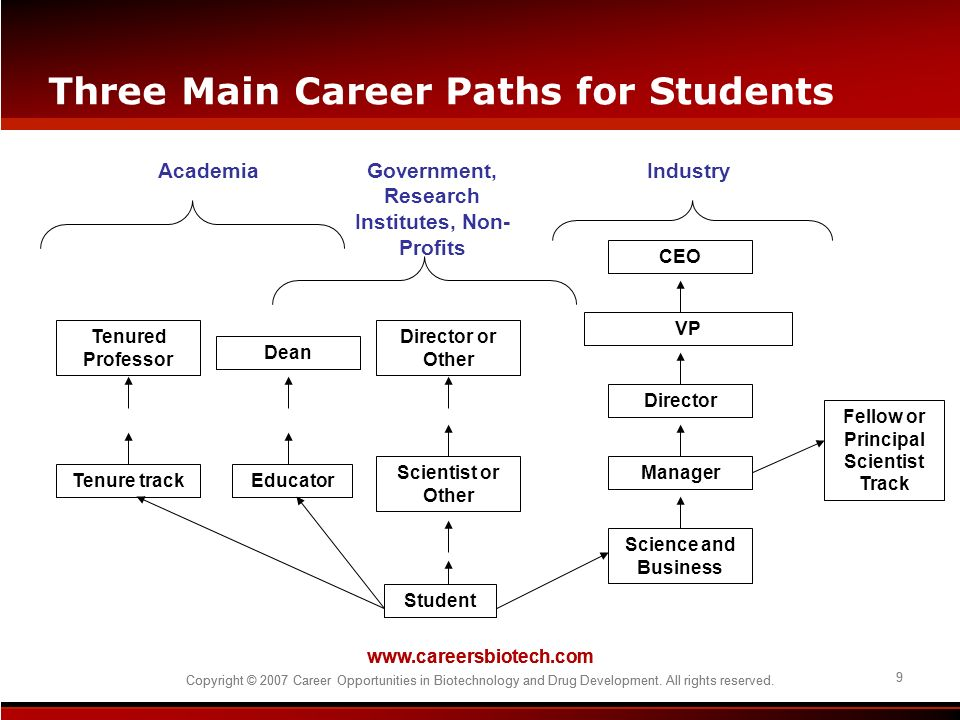 Three Main Career Paths for Students