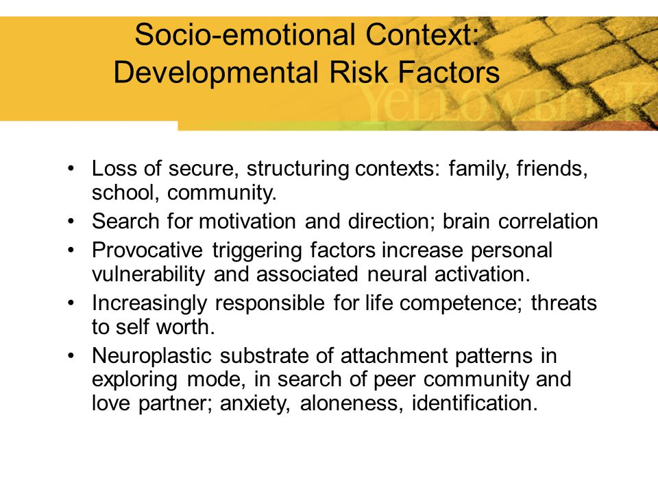 Socio-emotional Context: Developmental Risk Factors