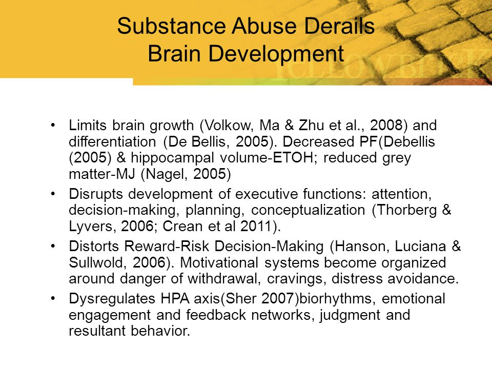 Substance Abuse Derails Brain Development