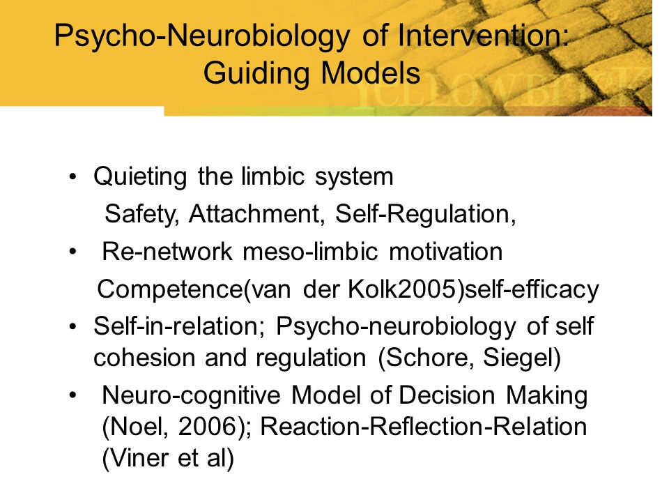 Psycho-Neurobiology of Intervention: Guiding Models