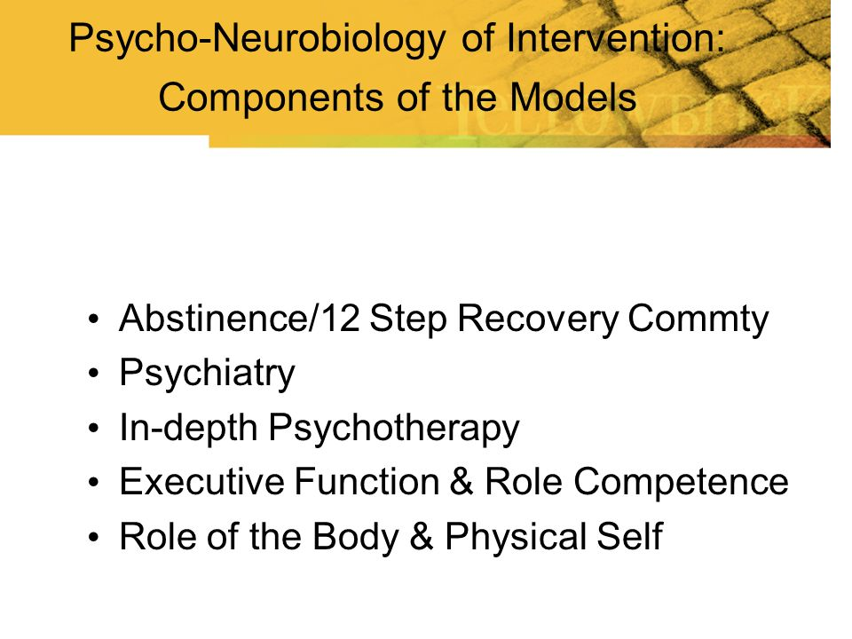 Psycho-Neurobiology of Intervention: Components of the Models