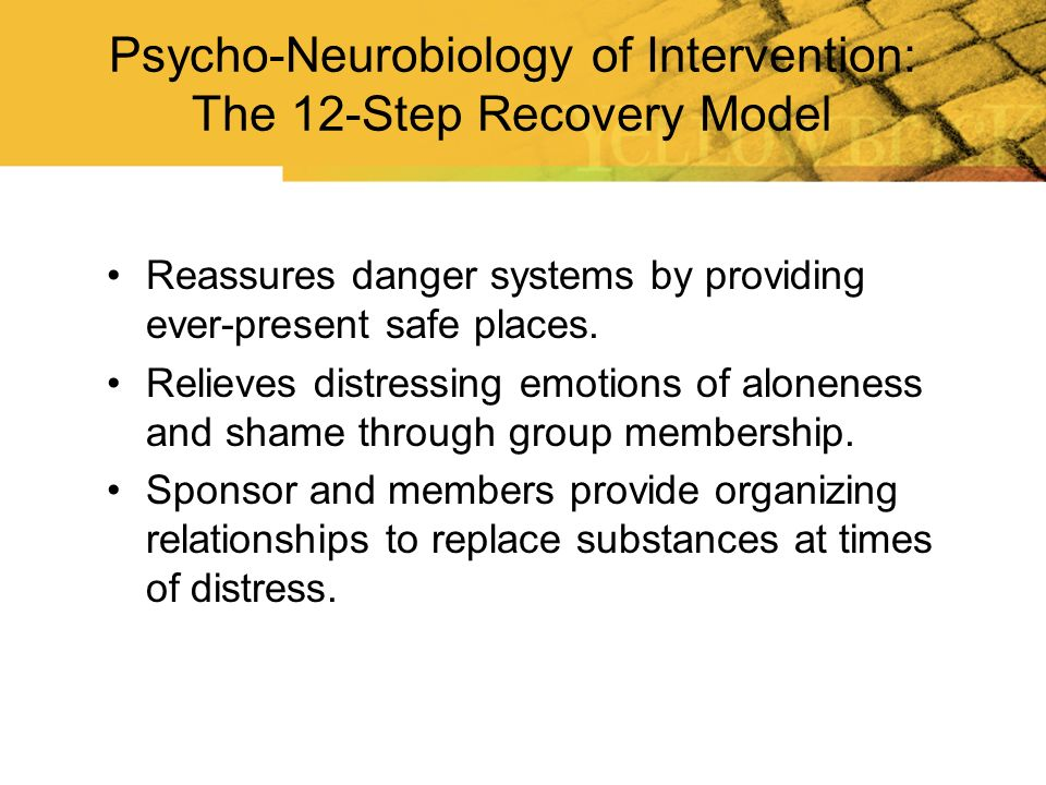 Psycho-Neurobiology of Intervention: The 12-Step Recovery Model