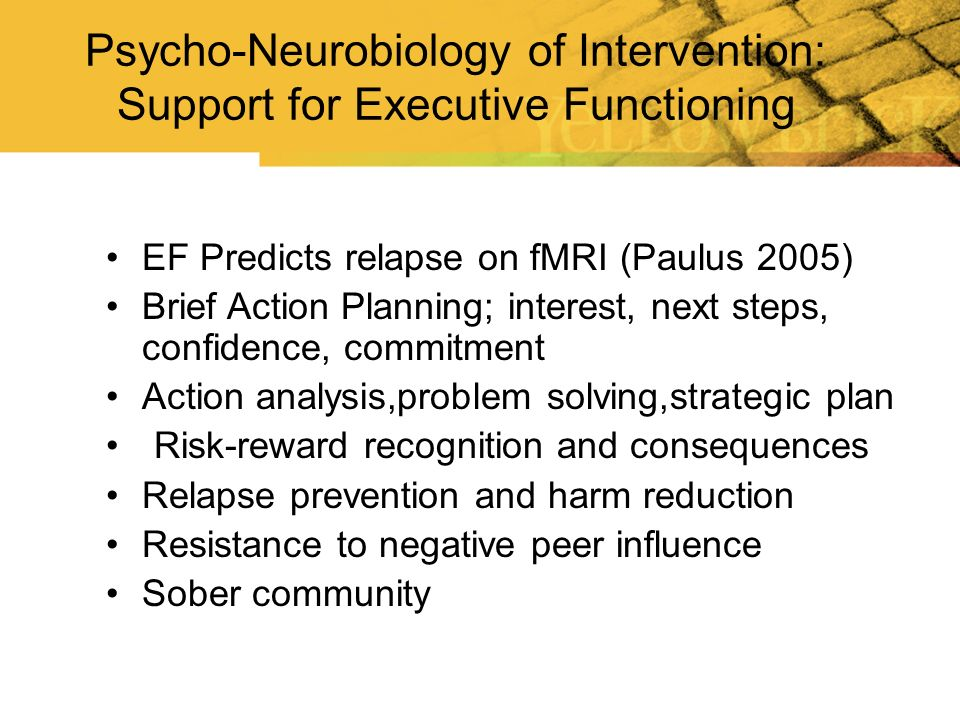 Psycho-Neurobiology of Intervention: Support for Executive Functioning