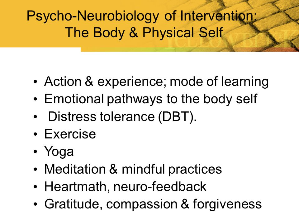 Psycho-Neurobiology of Intervention: The Body & Physical Self