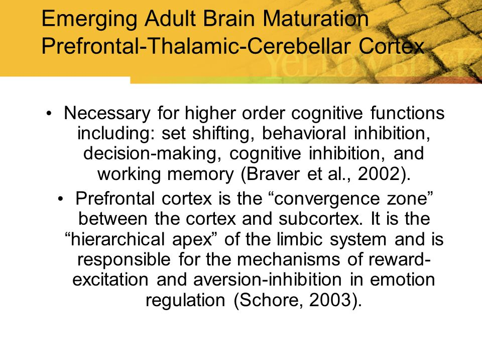 Emerging Adult Brain Maturation Prefrontal-Thalamic-Cerebellar Cortex