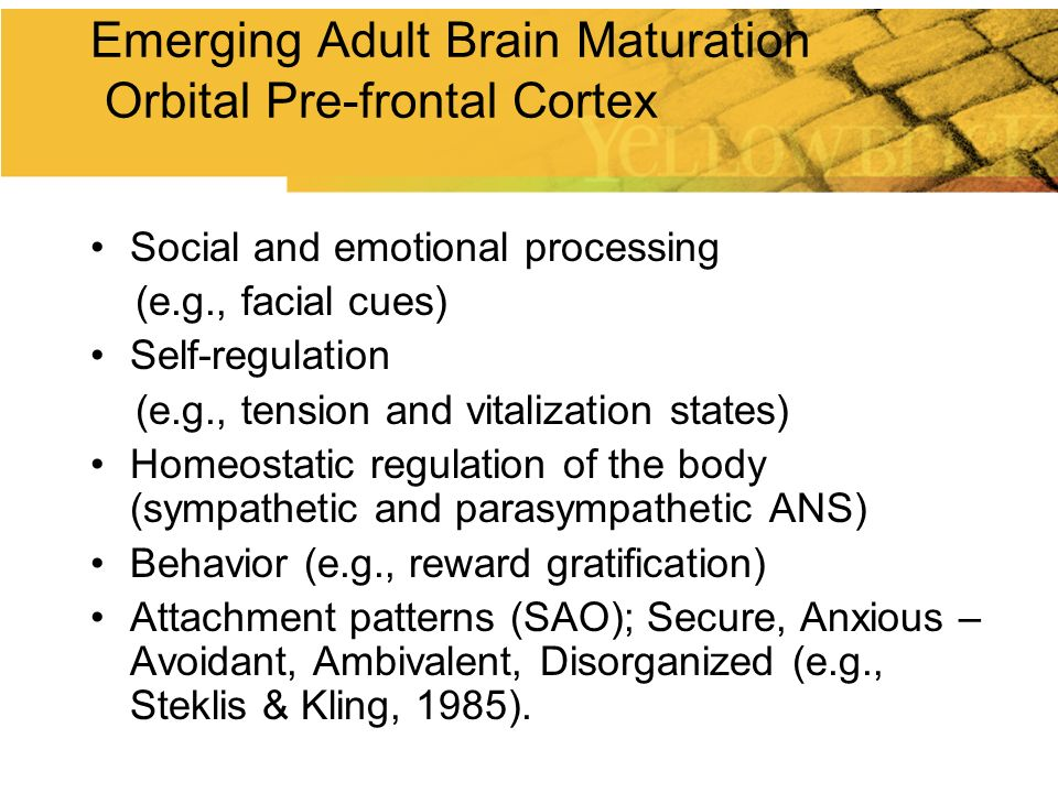 Emerging Adult Brain Maturation Orbital Pre-frontal Cortex
