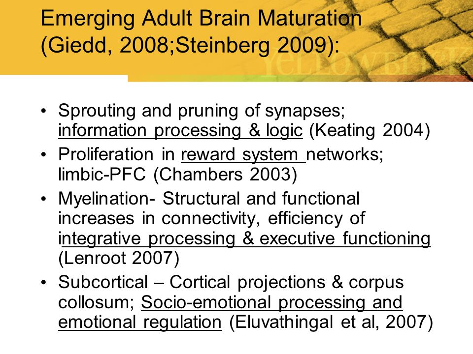 Emerging Adult Brain Maturation (Giedd, 2008;Steinberg 2009):