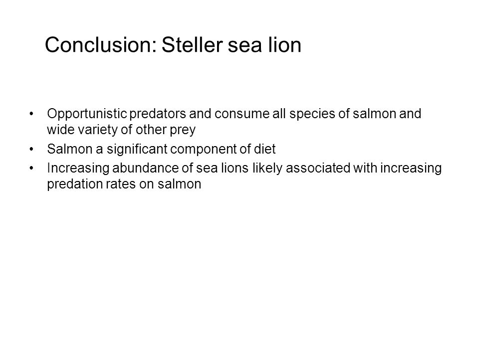 Conclusion: Steller sea lion