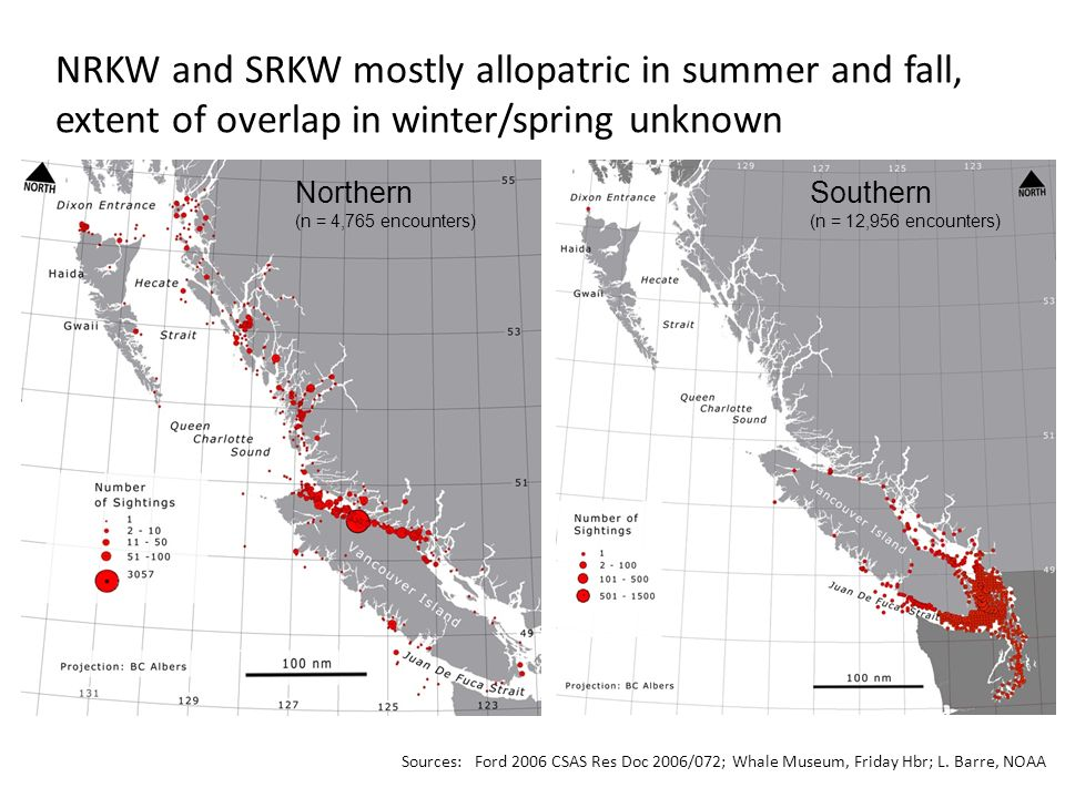 NRKW and SRKW mostly allopatric in summer and fall, extent of overlap in winter/spring unknown