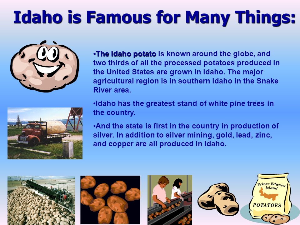 Idaho is Famous for Many Things: