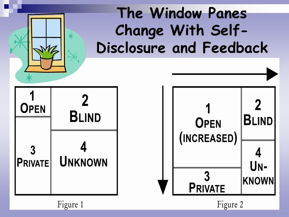 The Window Panes Change With Self- Disclosure and Feedback