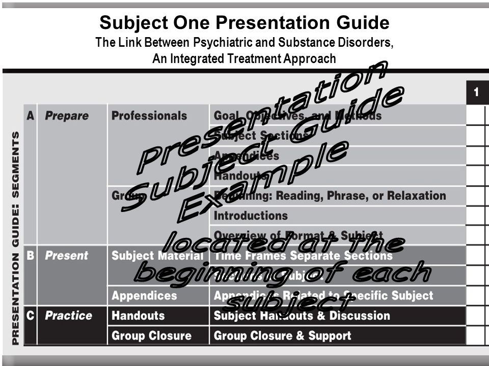 Subject One Presentation Guide
