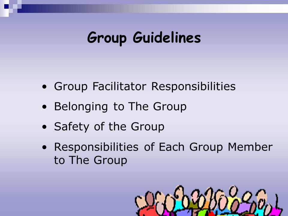Group Guidelines Group Facilitator Responsibilities